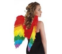 Vleugels: Engelenvleugels regenboog (50 x 50 cm)