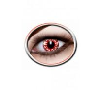Lenzen: Blood shot Lenses (3 Months)