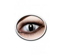 Lenzen: Black Cat Lenses (3 Months)