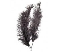 Veer spadonis: Zwart ± 50 cm