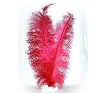 Veer spadonis: Rood ± 50 cm