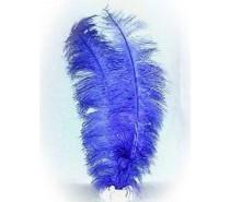 Veer spadonis: Blauw ± 50 cm